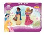 7940 - Large Disney Princesses Kit